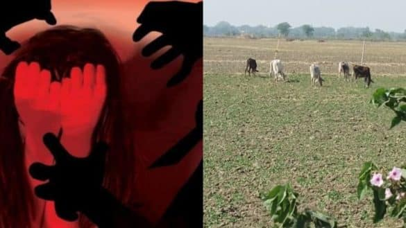 Minor who went to fetch cattle from farm gang raped in Bihar